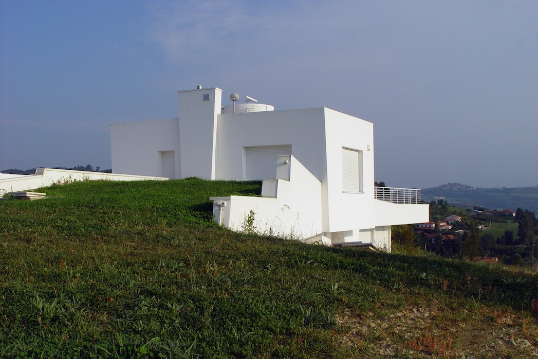 CasaBricco_tetto_verde